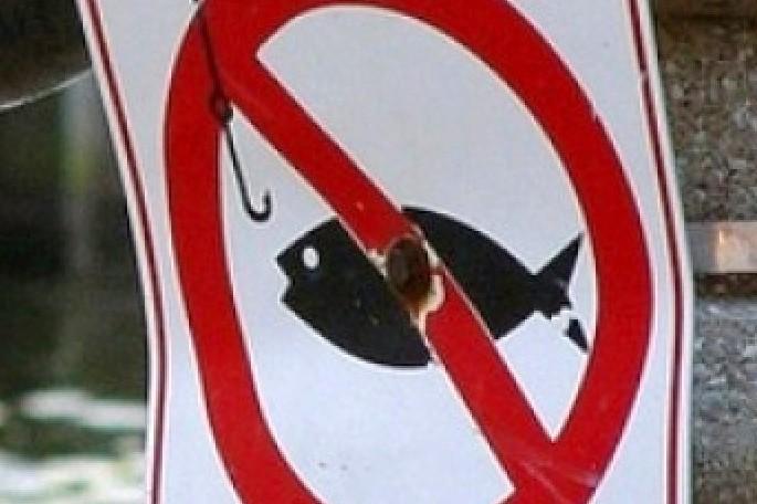 запрет на рыбалку шымкент