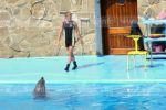 Выступление дельфина Николь и котика Фрося