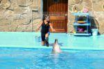 Актриса дельфин Николь
