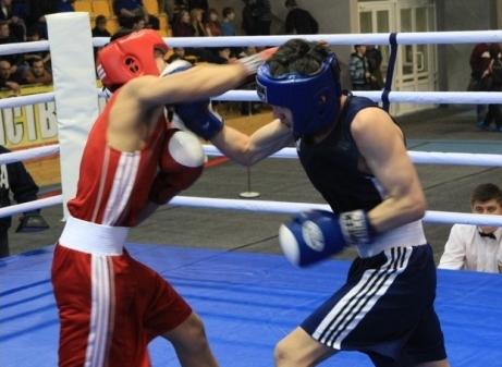 Юные боксеры из Ейска собрали золотой урожай, фото - tuimazy-boxing.ru